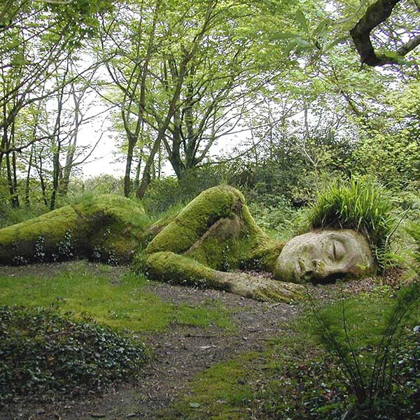 Gardens in South Cornwall