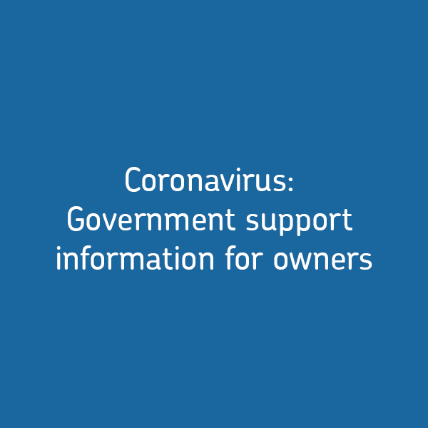 Coronavirus: Government support information