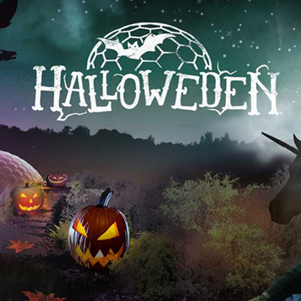 October Half Term Halloween Fun
