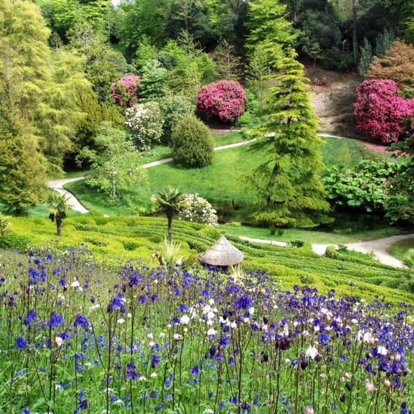 Falmouth: Gardens and Natural Spaces