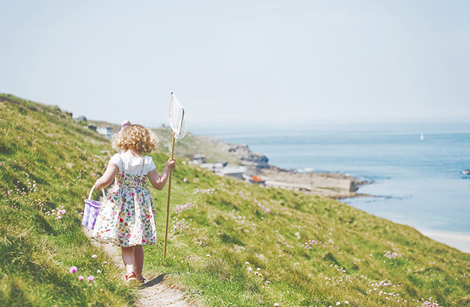Summer walks in Cornwall