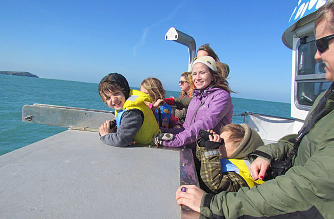Sea-safari