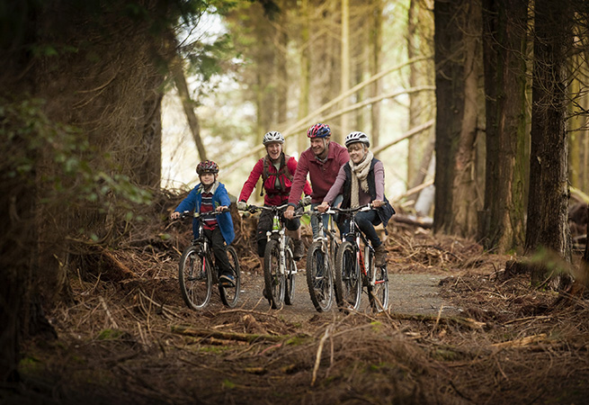 Family cycling in Cornish woodland