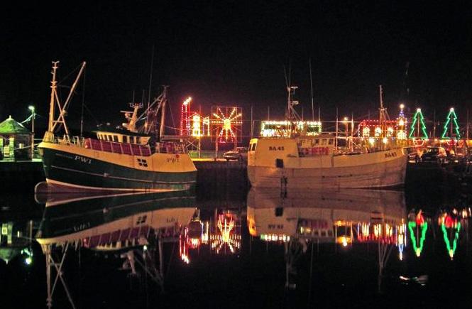 Padstow Christmas Lights