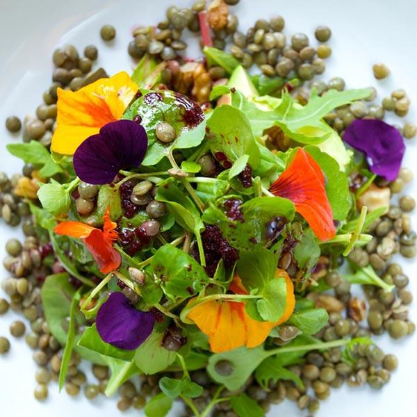 The best vegan and vegetarian restaurants in Cornwall