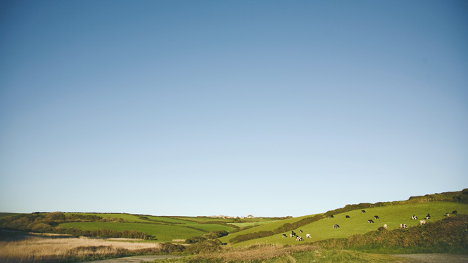 Mullion countryside
