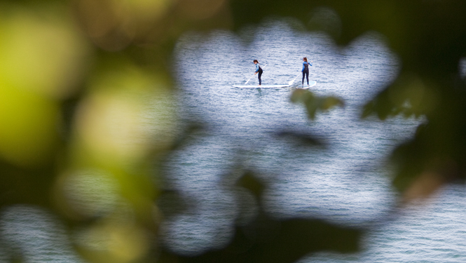 Paddleboarding in St Ives