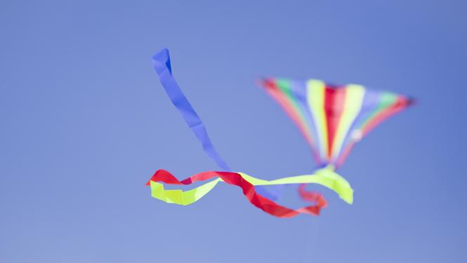 kite flying in Hayle